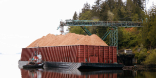 A metal conveyor pours wood chips from a forested area into a barge floating on shore.