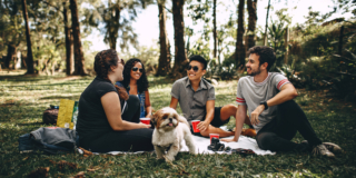 Group of people having a picnic with a dog on a field with thin trees in the background.