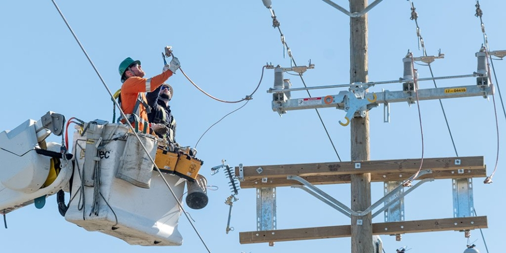 Two technicians in a cherry picker inspect equipment at the top of a hydro pole on a sunny day.