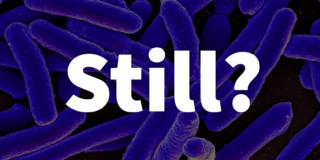 E. coli bacteria in purple with the word Still? written over it.