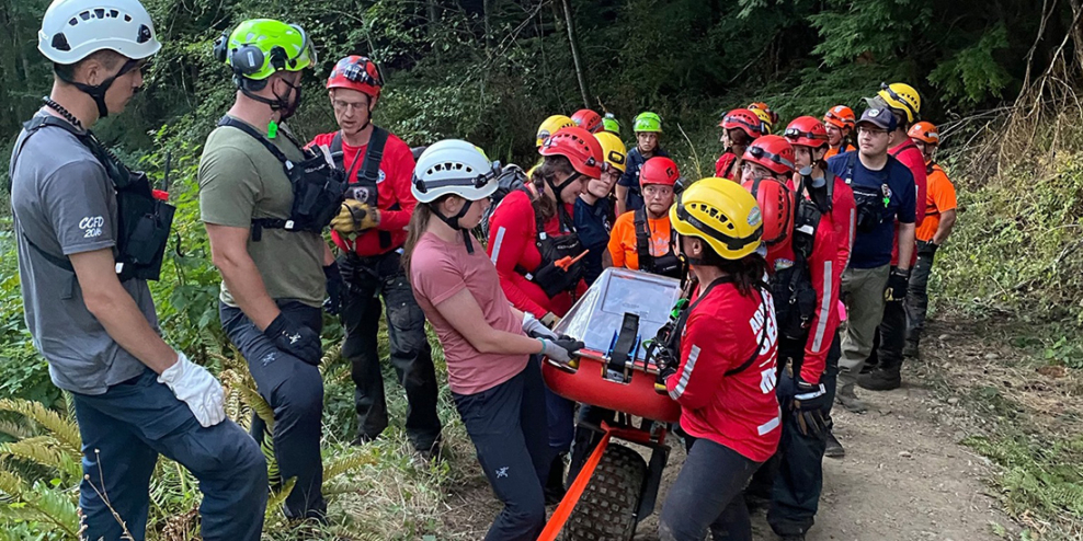 Arrowsmith Search and Rescue team walks an injured person out of the woods. The person is inside a stretcher that looks like a long wheelbarrow.